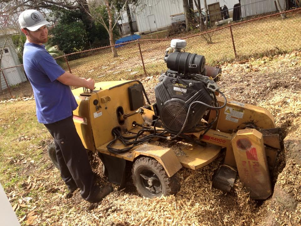 S & L Tree Service & Stump Grinding image 22