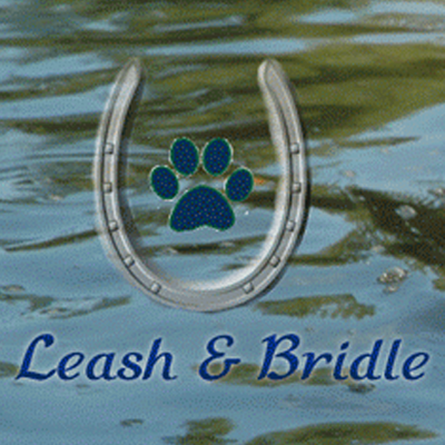 Leash And Bridle Boarding