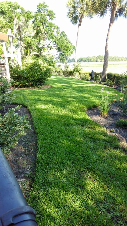 Lowcountry Greenscapes, LLC image 5