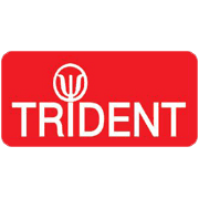 Trident Building & Roofing Services