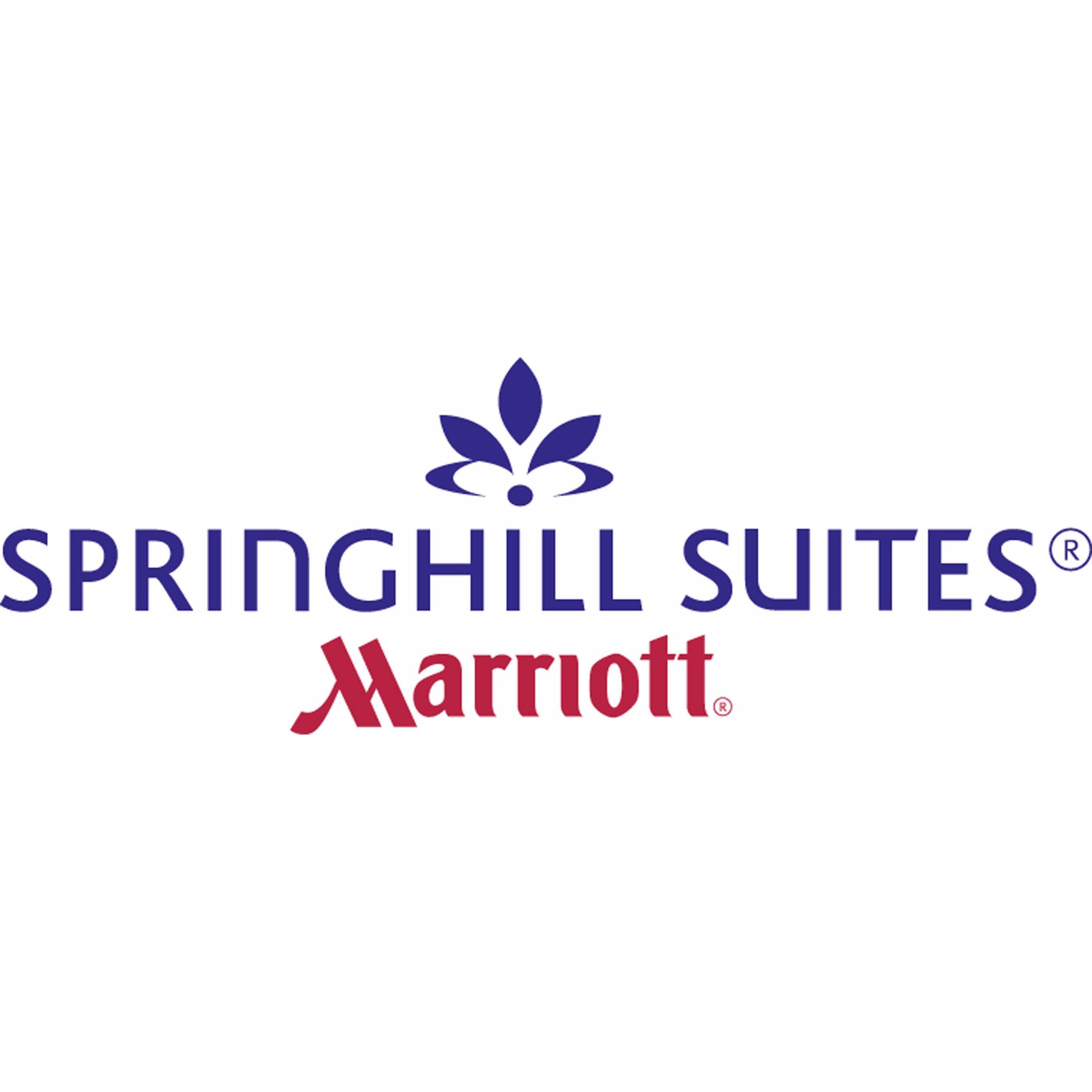 SpringHill Suites by Marriott Chicago Downtown/River North