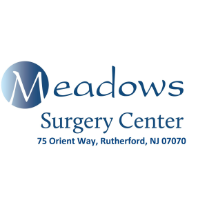 Meadows Surgery Center image 0