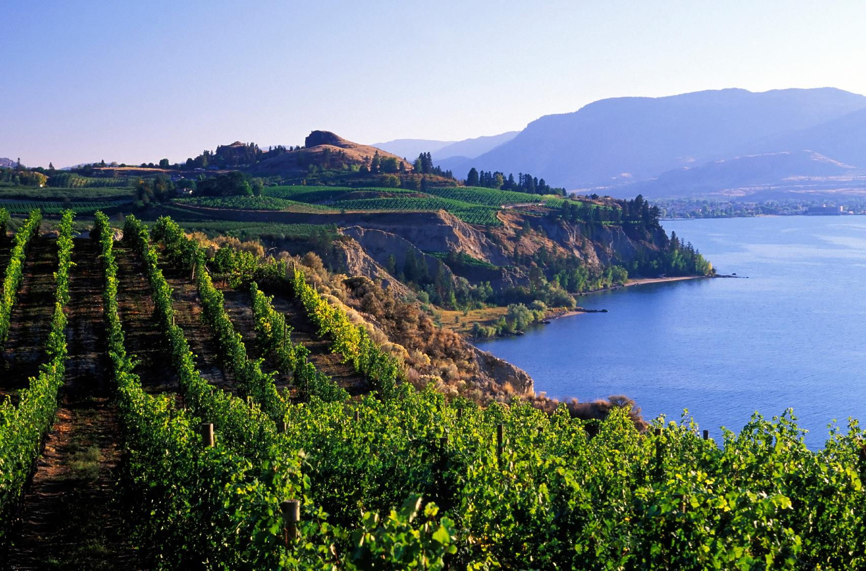 Best Western Plus Kelowna Hotel & Suites in Kelowna: Kelowna Wineries