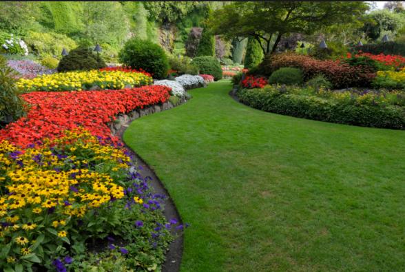 RainMasters Irrigation & JB Lawn Services LLC image 6