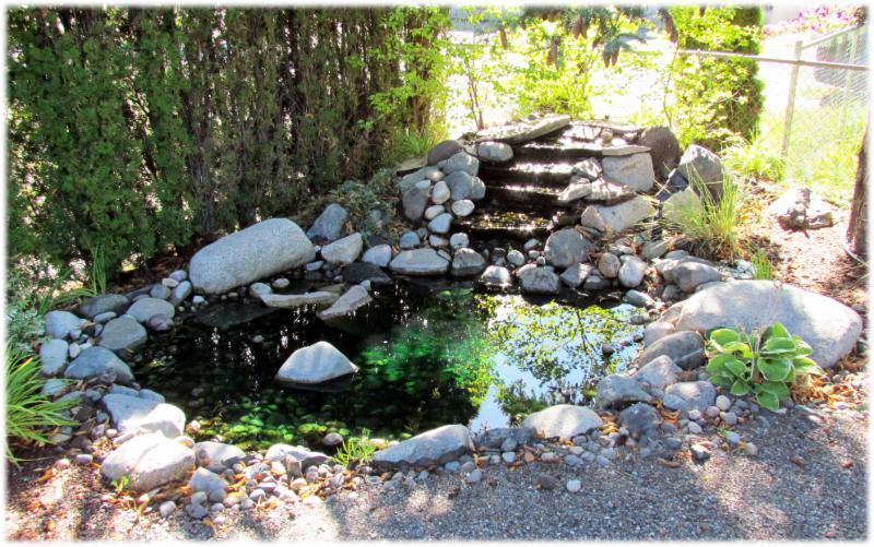 Compassionate Care Funerals in Williams Lake: the pond