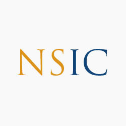 NS Insurance Consulting, Inc. image 0