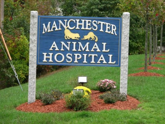 Animal Hospital - ad image