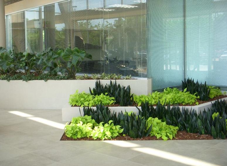 Foliage design systems of ne fl inc member