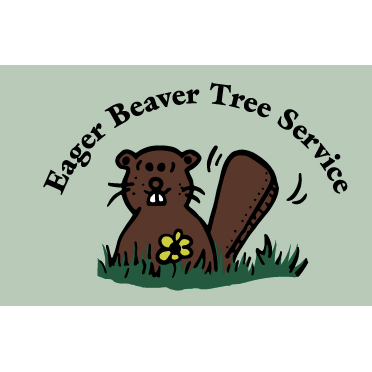Eager Beaver Tree Service image 0