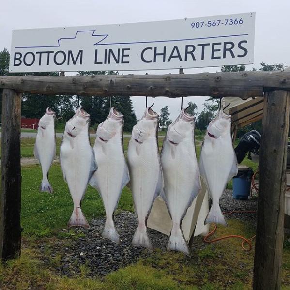 Bottom Line Charters image 10