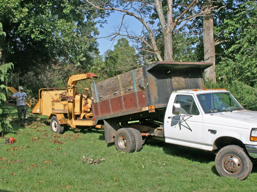 Piedmont Tree and Lawn Care image 2