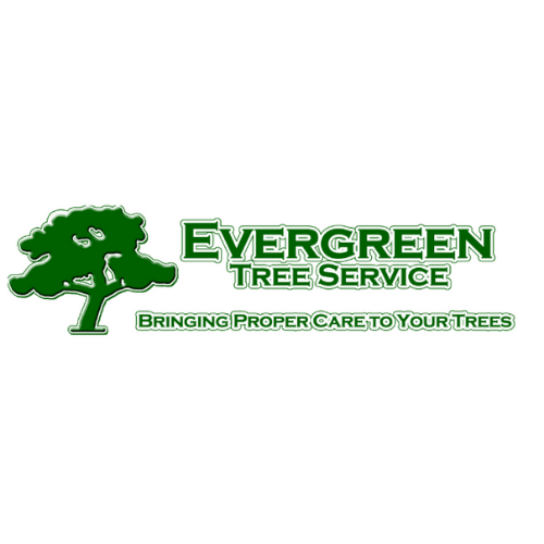 Evergreen Tree Service