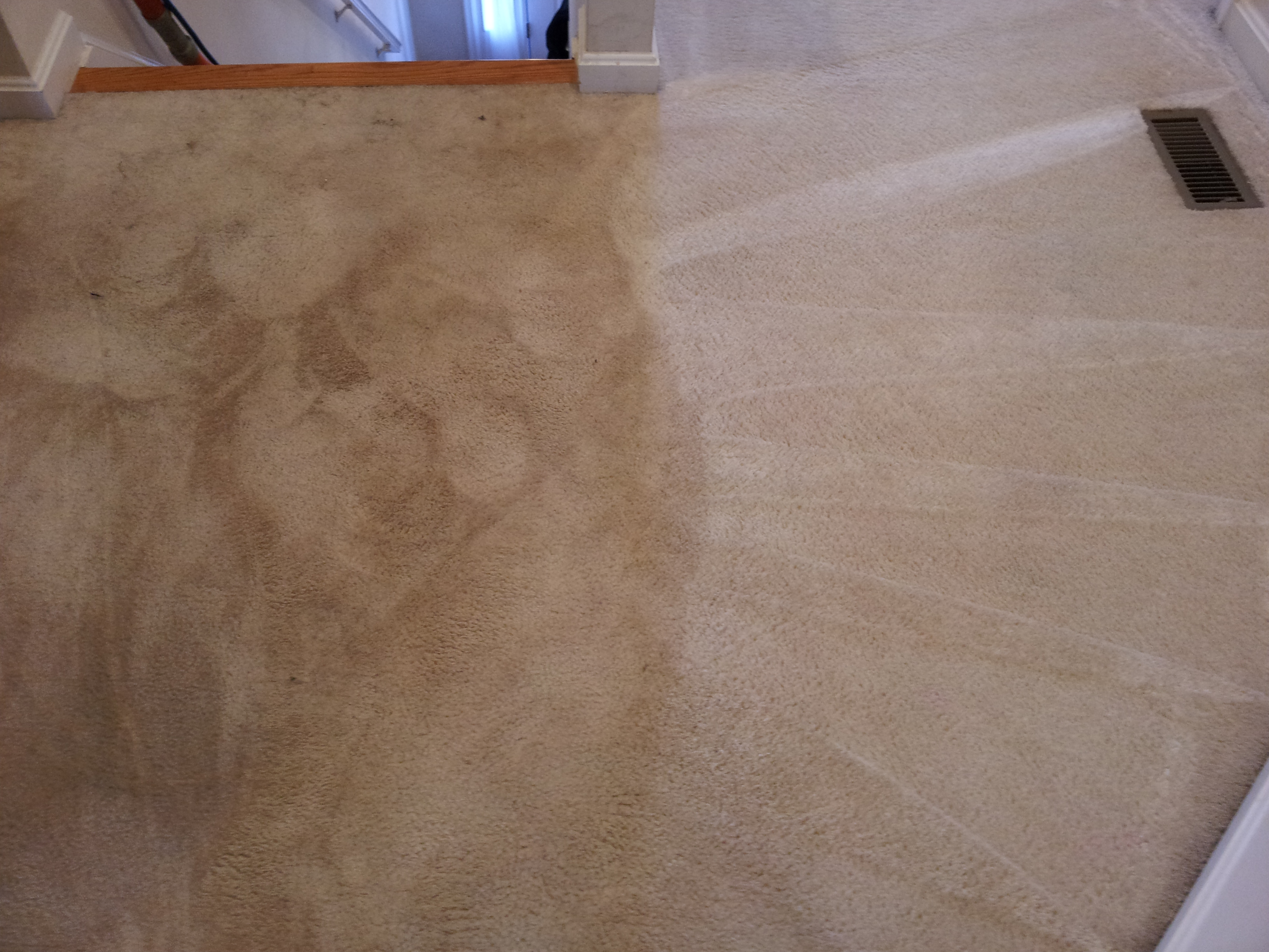 CleanWay Carpet Care image 0