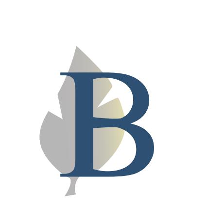 Bonavia Properties image 4