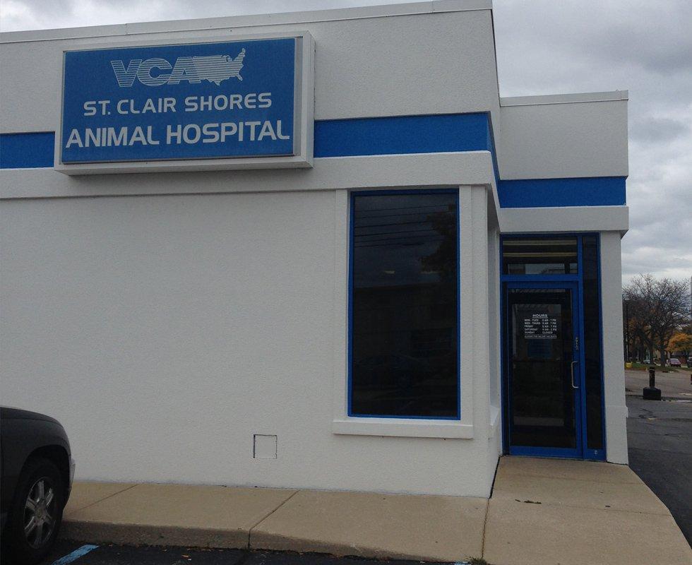 VCA St. Clair Shores Animal Hospital image 3
