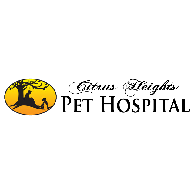 Citrus Heights Pet Hospital