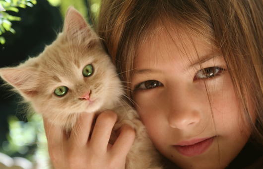 SpayXperts, Spay Neuter & Well Pet Care image 0