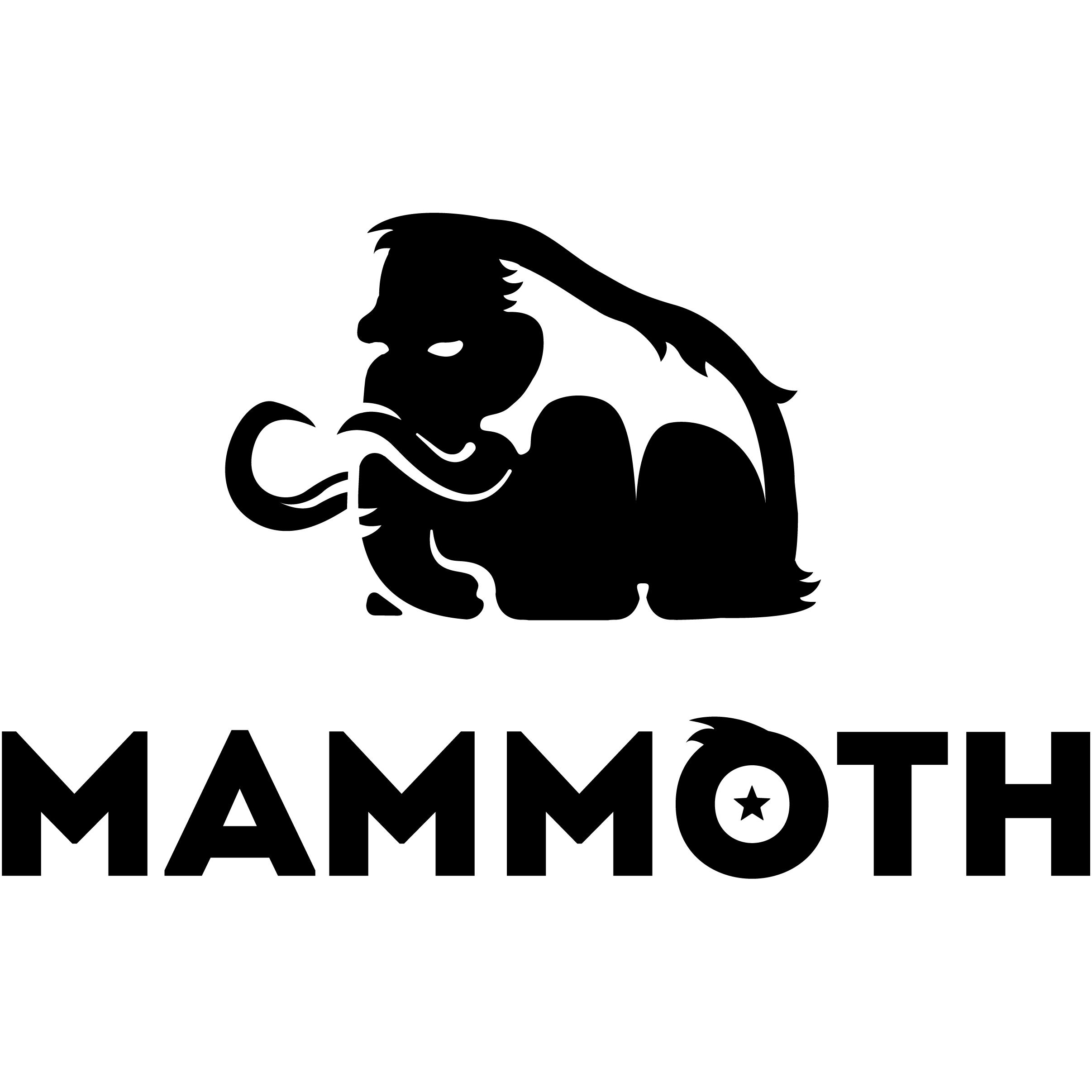 Mammoth | Marketing Agency