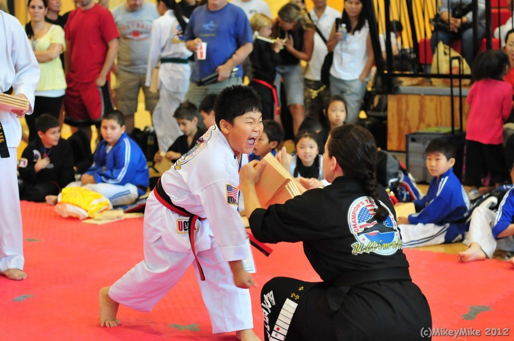 Flushing Ultimate Champions Tae Kwon Do - ad image