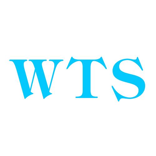Woods Tax Service LLC