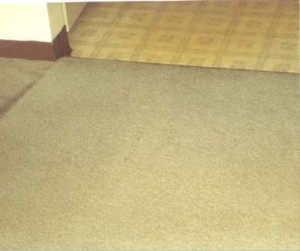Simply Clean Carpet Care image 3