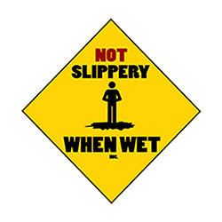 Not Slippery When Wet image 0