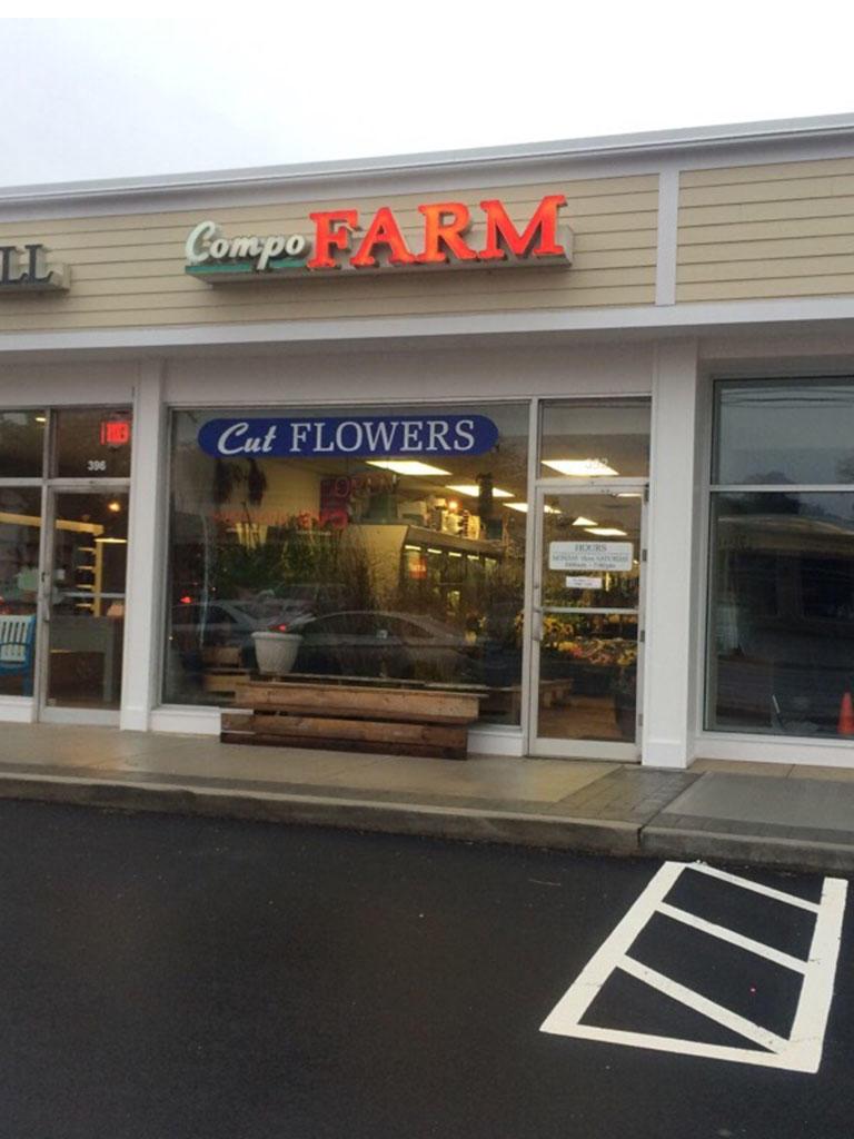 Compo Farm Flowers image 6
