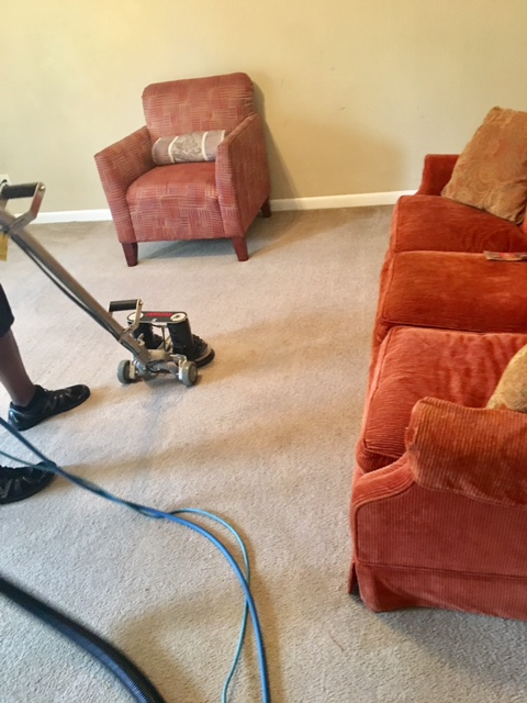 Stains Be Gone Carpet Cleaning, LLC image 3