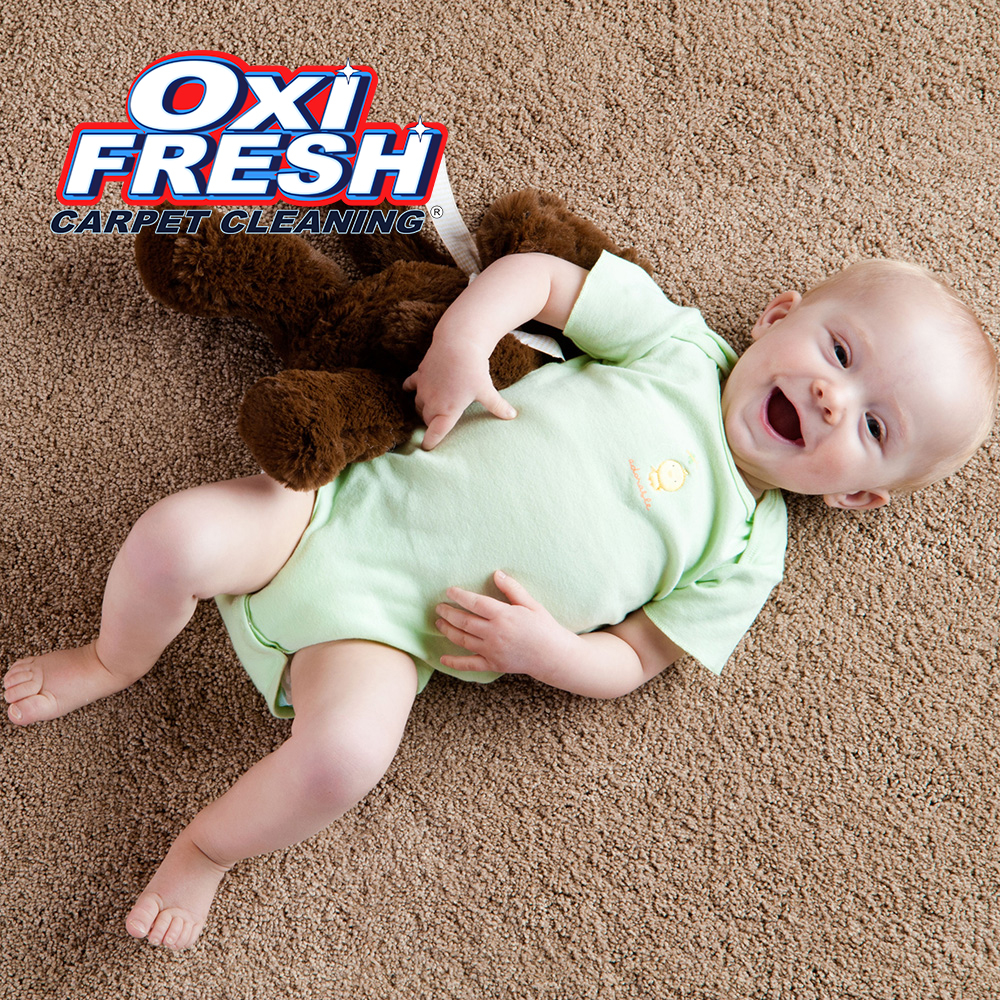 Oxi Fresh Carpet Cleaning image 7