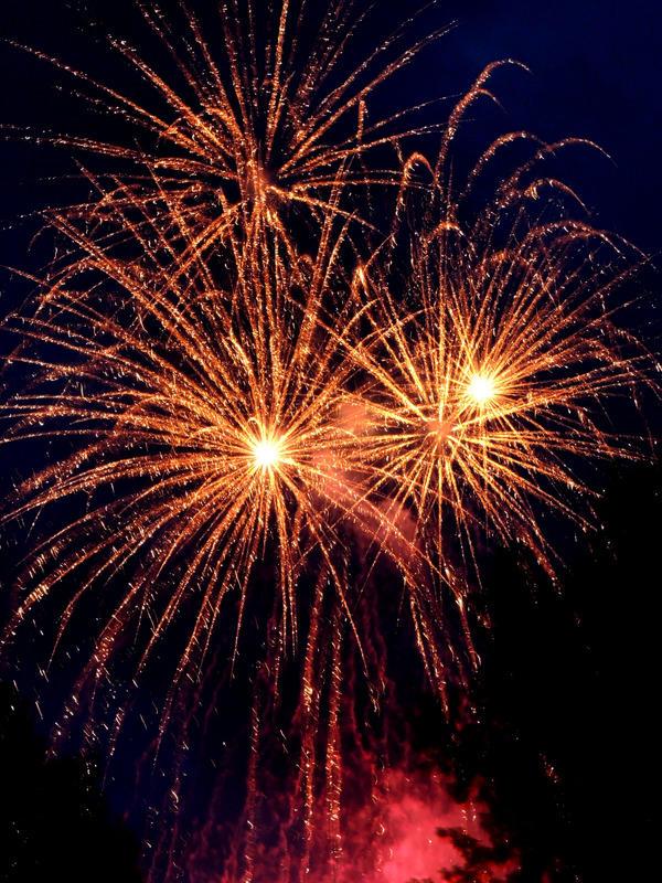 King Bird Fireworks image 10