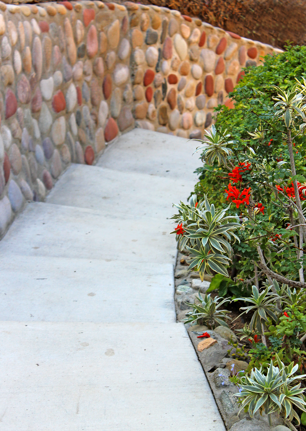 Flores Landscaping image 32