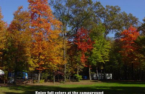 Mercer / Grove City KOA Holiday image 7