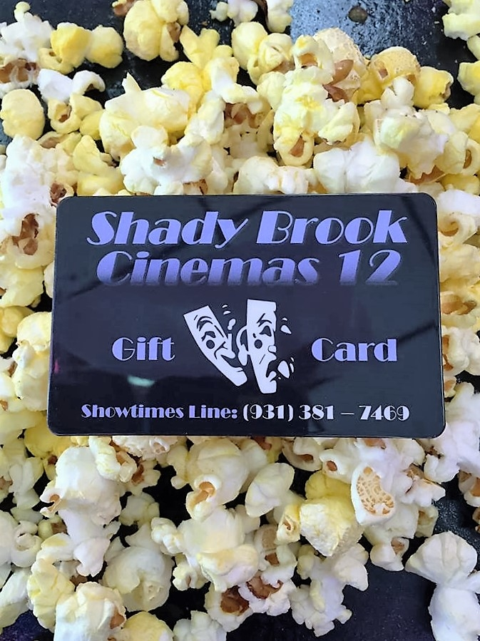 Shady Brook Cinemas 12 image 0