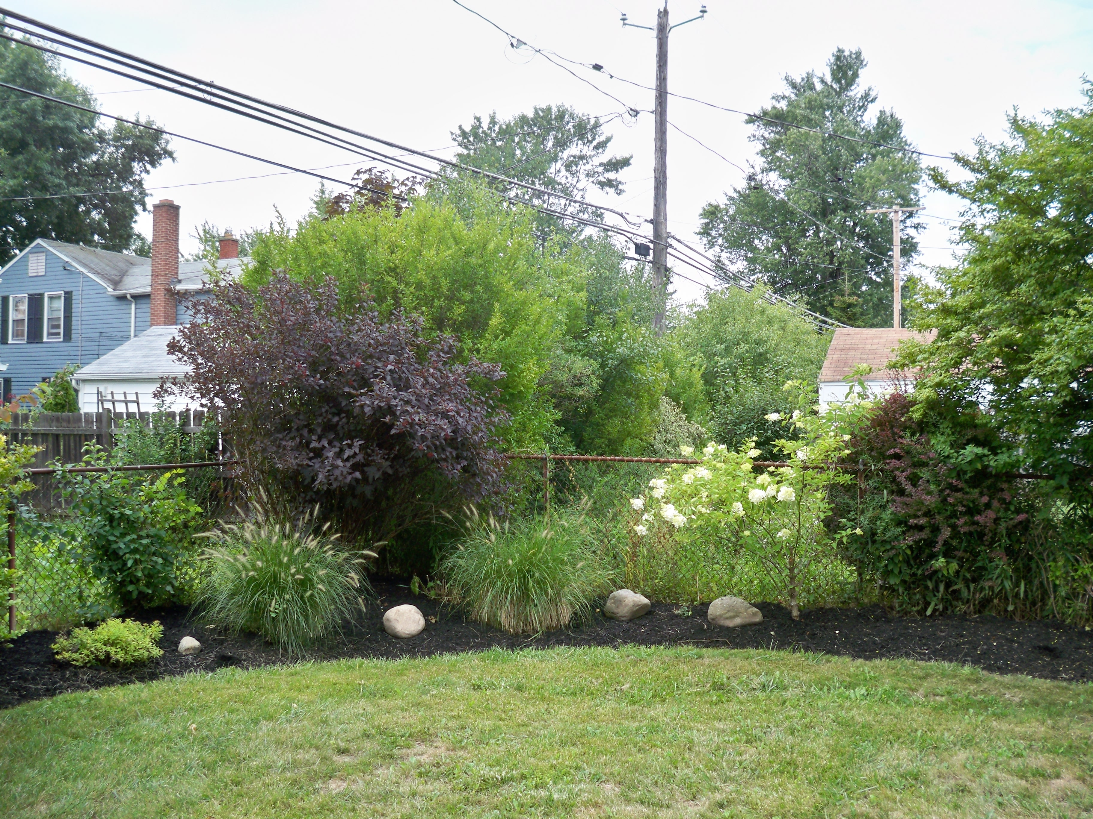 CJ Cutting Edge Lawn & Landscape image 3