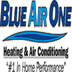 Blue Air One Inc image 0