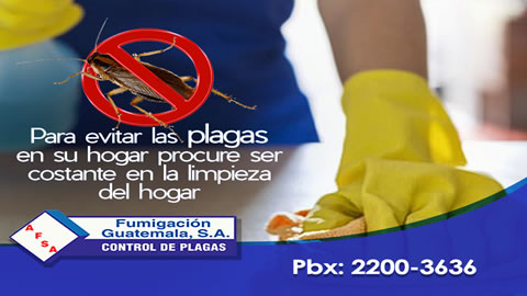 AF Fumigacion Guatemala S.A