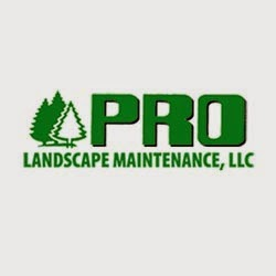 Pro landscape maintenance citysearch for Professional landscaping service