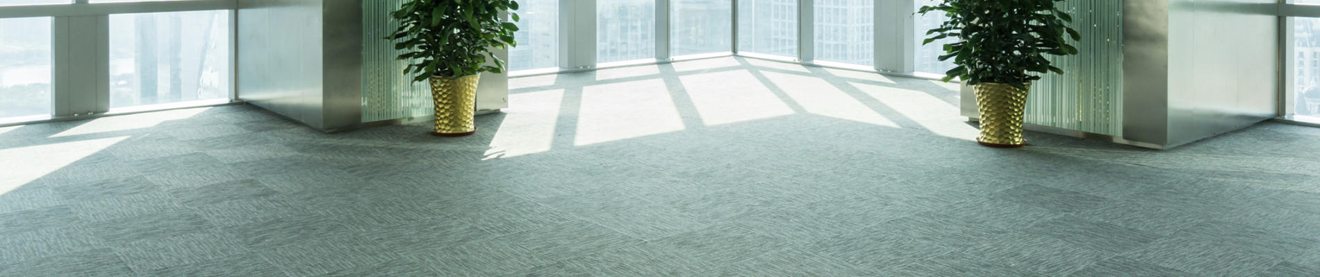 Canyon Carpet Care image 1