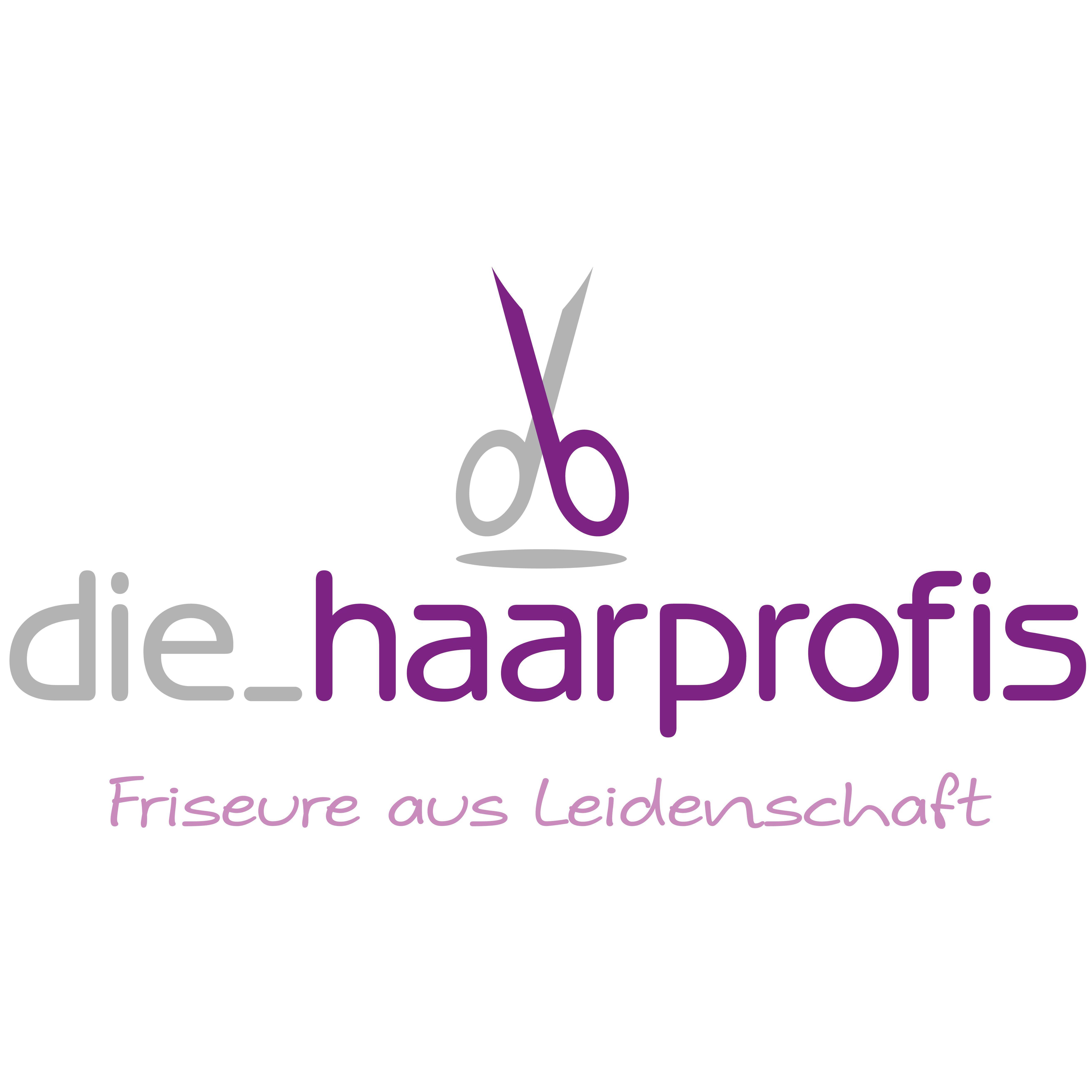 Logo von die_haarprofis Inh. Wencke Franck