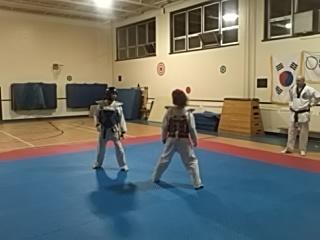 Ecole de Taekwondo Luc Mercier (W T F style Olympique) à Gatineau