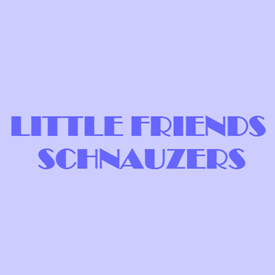 Little Friends Schnauzers