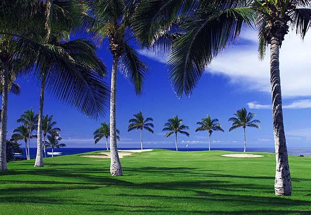 Waikoloa Beach Marriott Resort & Spa image 13