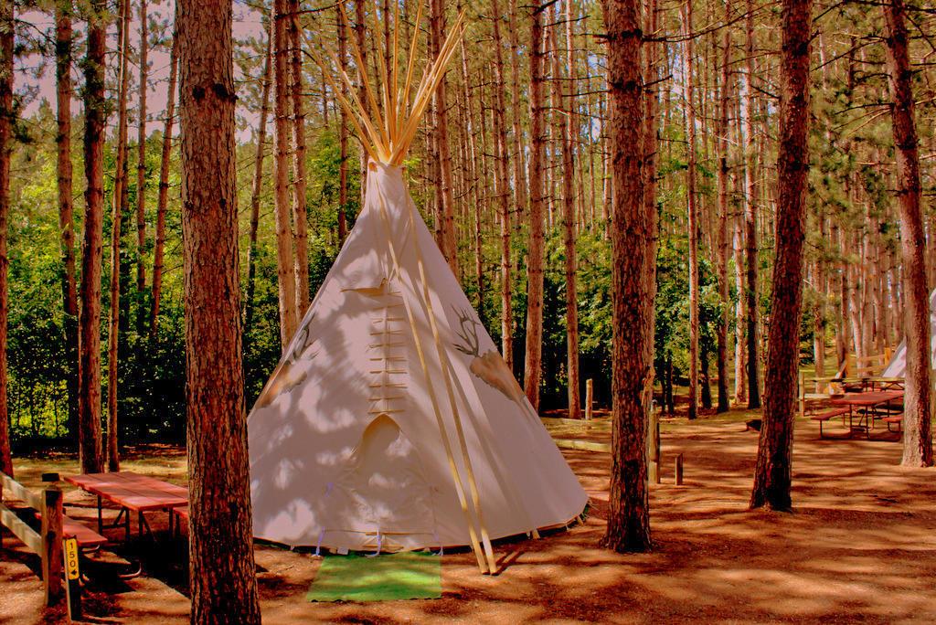 Hayward KOA Holiday image 24