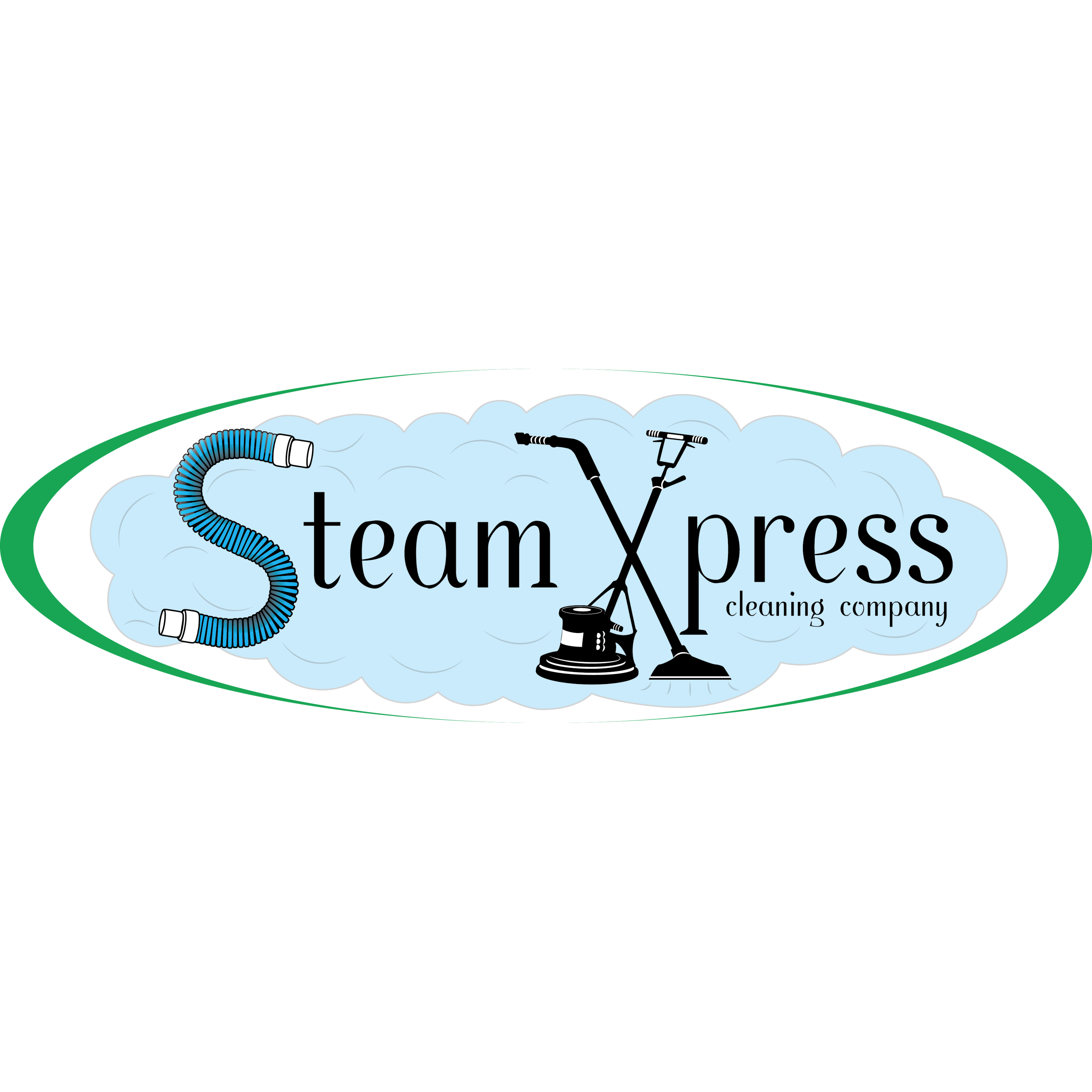 steam xpress carpet cleaning