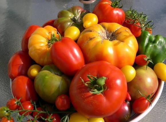 Red Barn Kitchen image 3