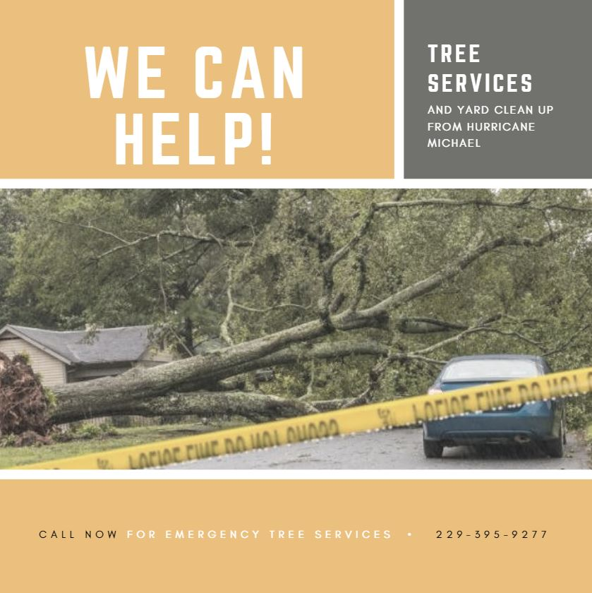 Affordable Trees & Construction, LLC