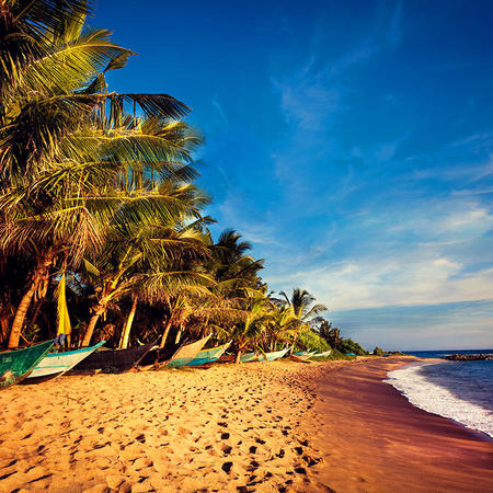 The exotic island of Sri Lanka is perfect for that extra special getaway