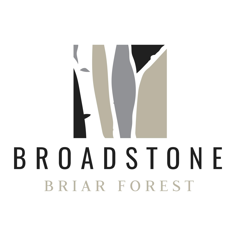 Broadstone Briar Forest