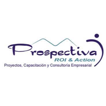 PROSPECTIVA ROI & ACTION SA DE CV