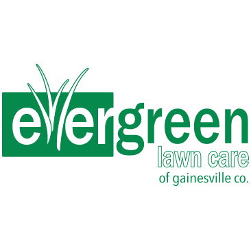Evergreen Lawn Care
